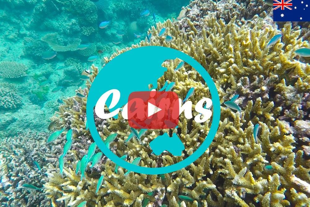 Weltreise Vlog #22: Cairns ∙ Ab in das Great Barrier Reef und unser erster Tag im Camper