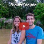 Kinabatangan River ∙ Die kleinsten Elefanten der Welt ∙ Fluss-Safari ∙ Borneo ∙ Weltreise Vlog #109
