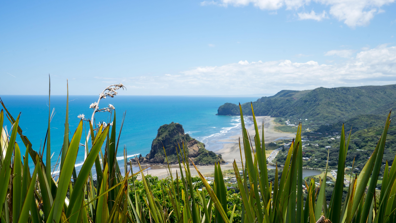 Piha und Coromandel – Wunderbare Küstenlandschaften und abwechslungsreiche Strände