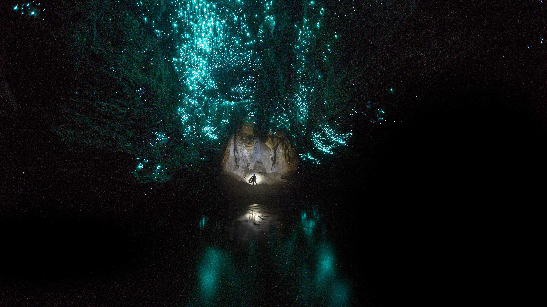 Waitomo – Unsere Caving Tour im faszinierenden Höhlensystem