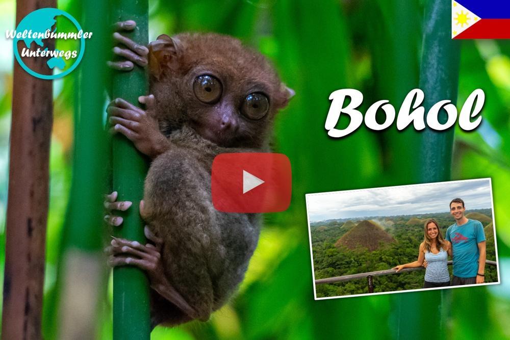 Bohol ∙ Unser Roller Roadtrip zu den Chocolate Hills, Koboldmakis und Anda ∙ Weltreise Vlog #93