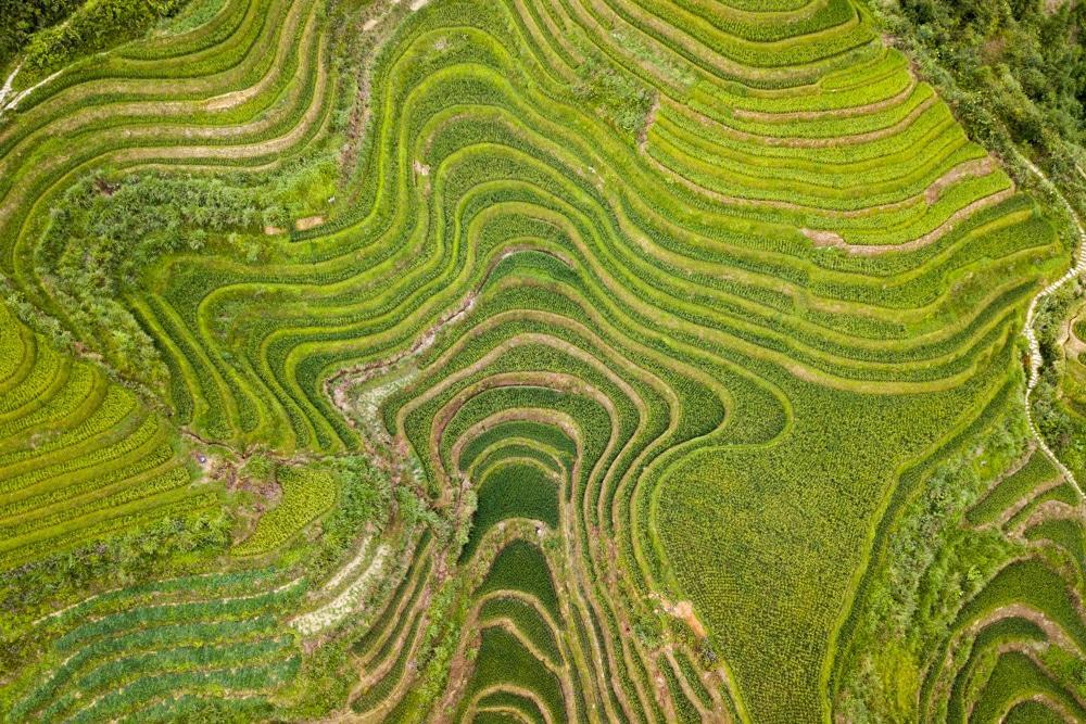 Guilin und Longsheng – Leuchtende Pagoden und grüne Reisterrassen