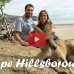 Weltreise Vlog #28: Cape Hillsborough ∙ Känguru-Alarm beim Sonnenaufgang