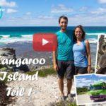 Weltreise Vlog #42: Adelaide und Kangaroo Island ∙ Putzige Seelöwen und Pinguine