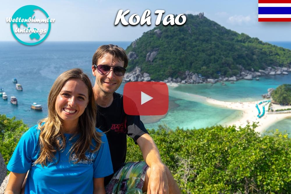Koh Tao ∙ Gigantische Walhaie und eine bunte Unterwasserwelt ∙ Weltreise Vlog #73