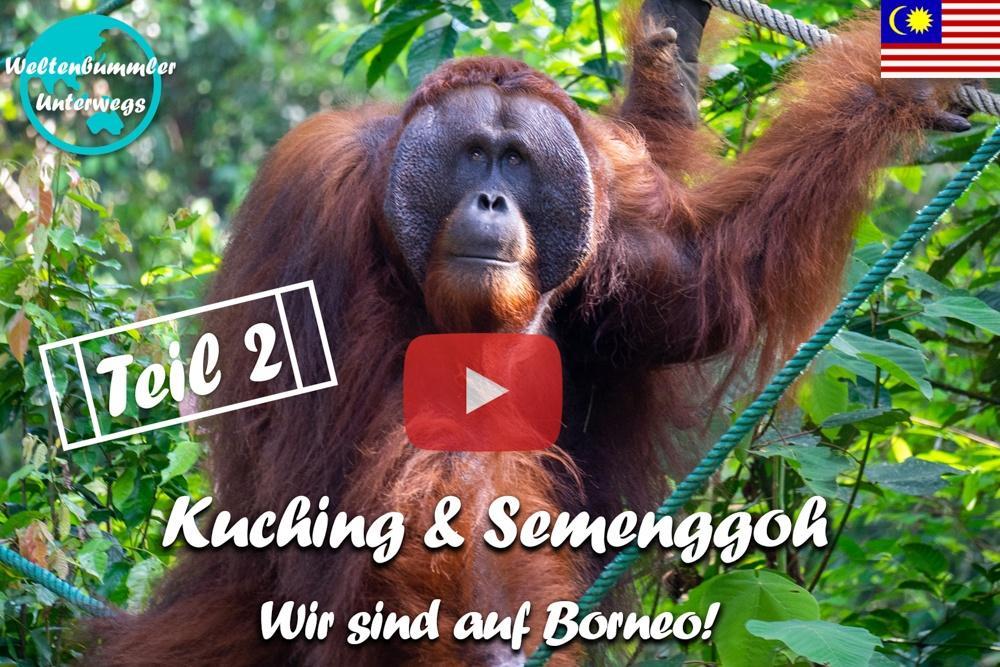 Kuching ∙ Orang-Utans im Semenggoh Nature Reserve ∙ Teil 2  ∙ Borneo ∙ Weltreise Vlog #104