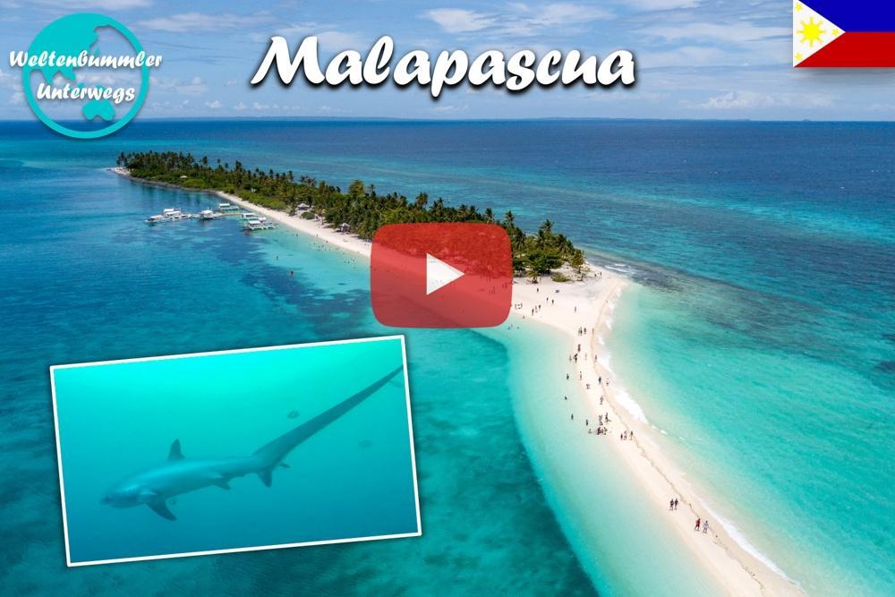 Unser Hai-light ∙ Die majestätischen Fuchshaie von Malapascua ∙ Weltreise Vlog #92