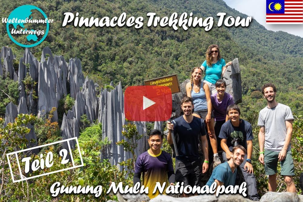 Mulu National Park ∙ Auf dem Pinnacles Trail durch den Regenwald ∙ Teil 2  ∙ Borneo ∙ Weltreise Vlog #106