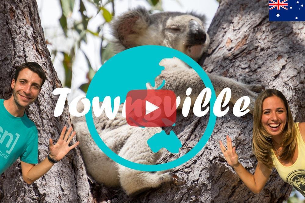 Weltreise Vlog #26: Townsville ∙ Süße Koalas auf Magnetic Island