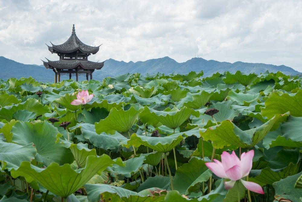Hangzhou: Einmal um den West Lake mit dem Rollstuhl